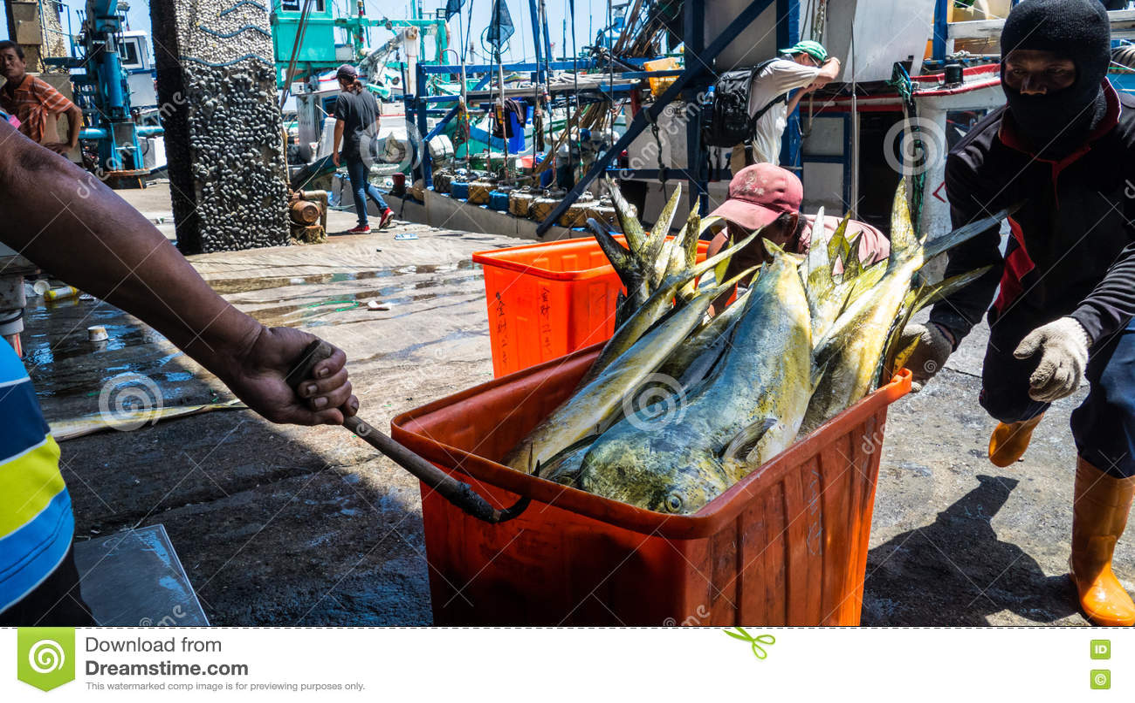 Download Состыкованная рыбацкими лодками гавань Chenggong удя извлекает липкую жидкость рыбной ловли Редакционное Стоковое Изображение - изображение насчитывающей цветы, город: 72297889