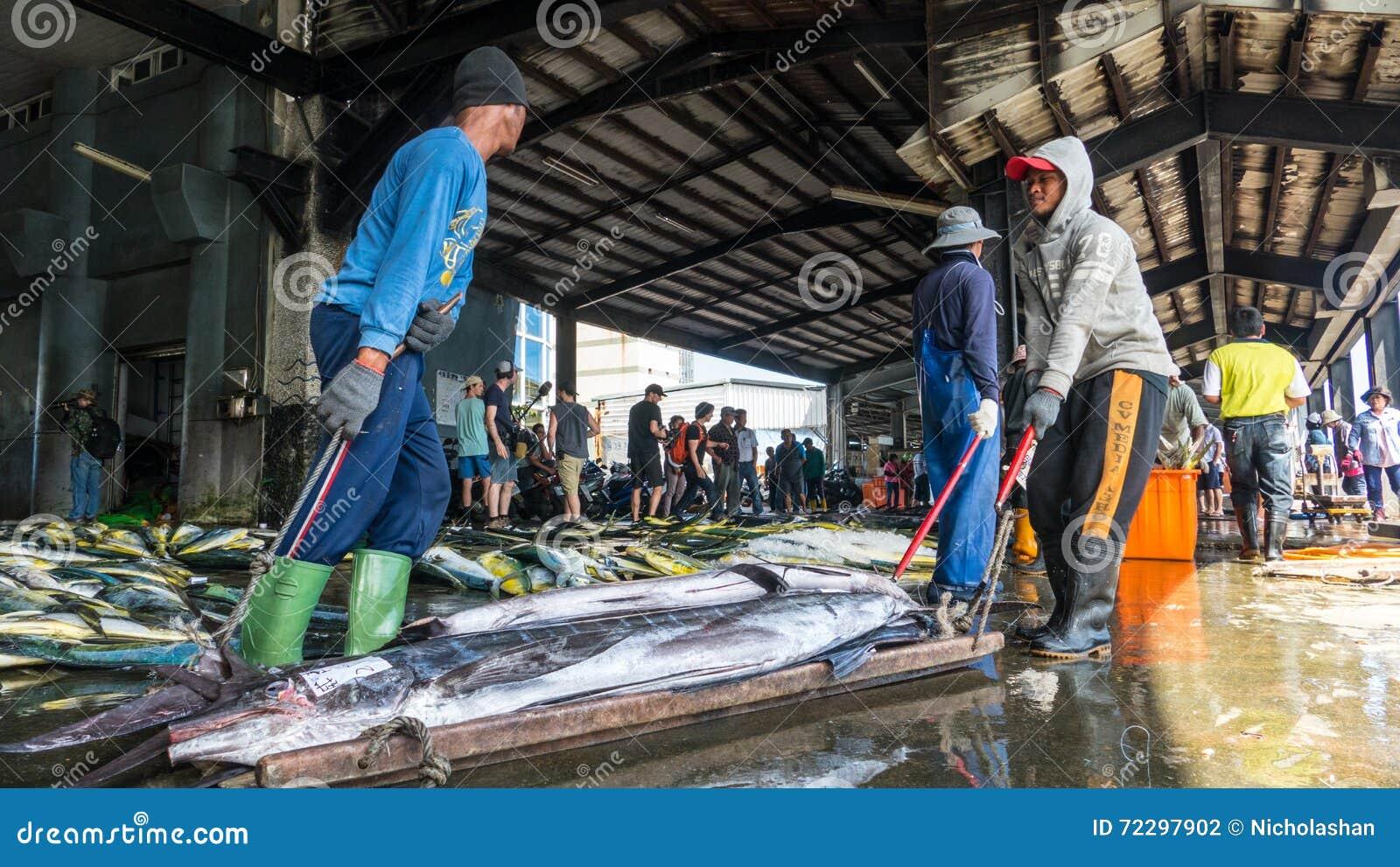 Download Состыкованная рыбацкими лодками гавань Chenggong удя извлекает липкую жидкость рыбной ловли Редакционное Фотография - изображение насчитывающей multi, francisco: 72297902