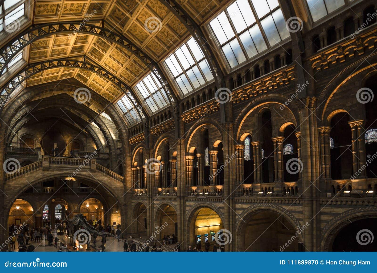 Сочетание из Лондона музея естественной истории отразило свет от окон потолка и внутреннего света