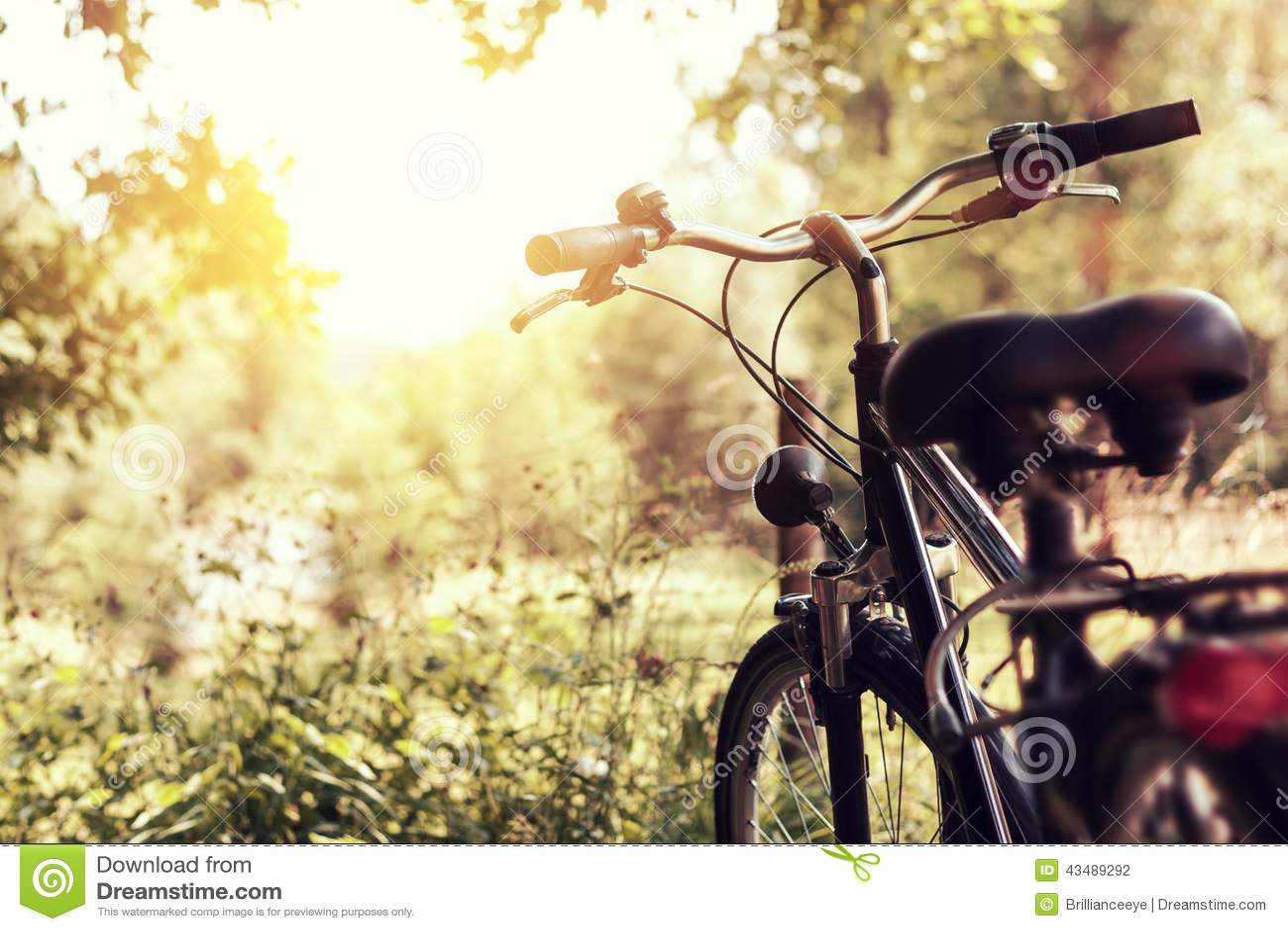 Солнечность и стоящий велосипед на природе