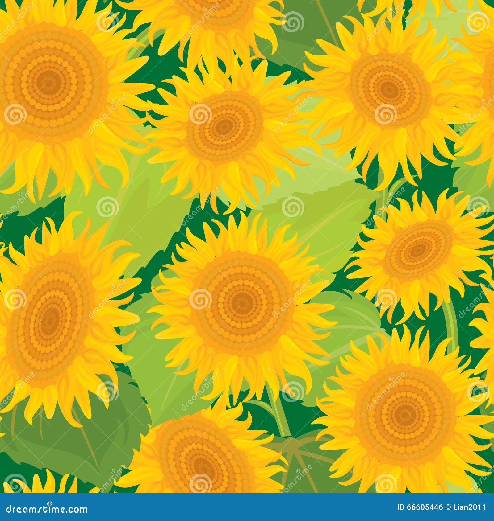 солнцецветы картины безшовные Сезон лета