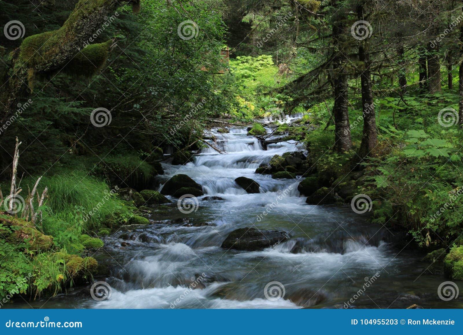 Спеша поток вниз с горы встает на сторону около Palmer, Аляски