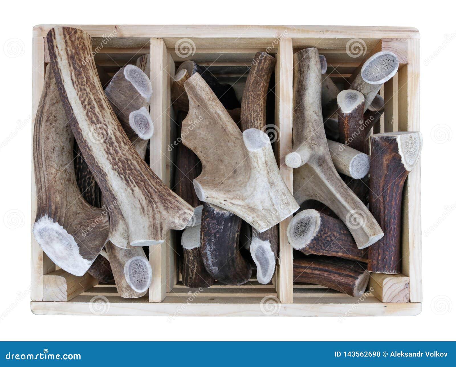 Спиленные части antlers оленей и лосей леса в деревянной коробке проданной на улице
