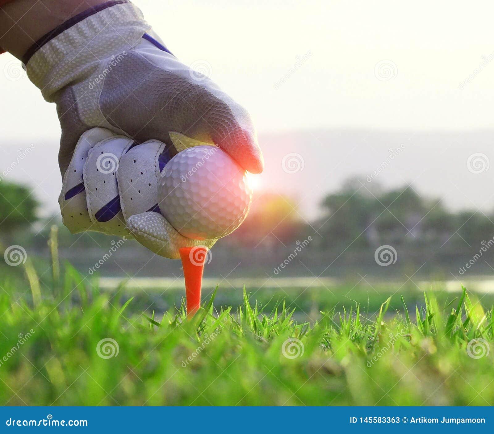 Спортсмены установили шары для игры в гольф вниз в поле
