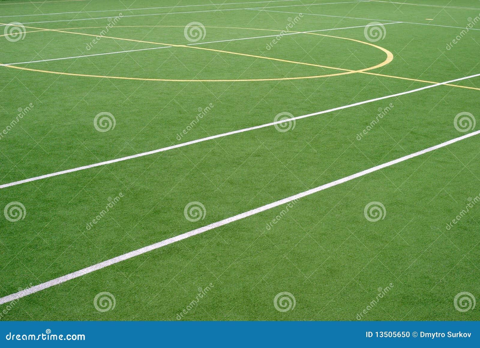 спорты школы поля