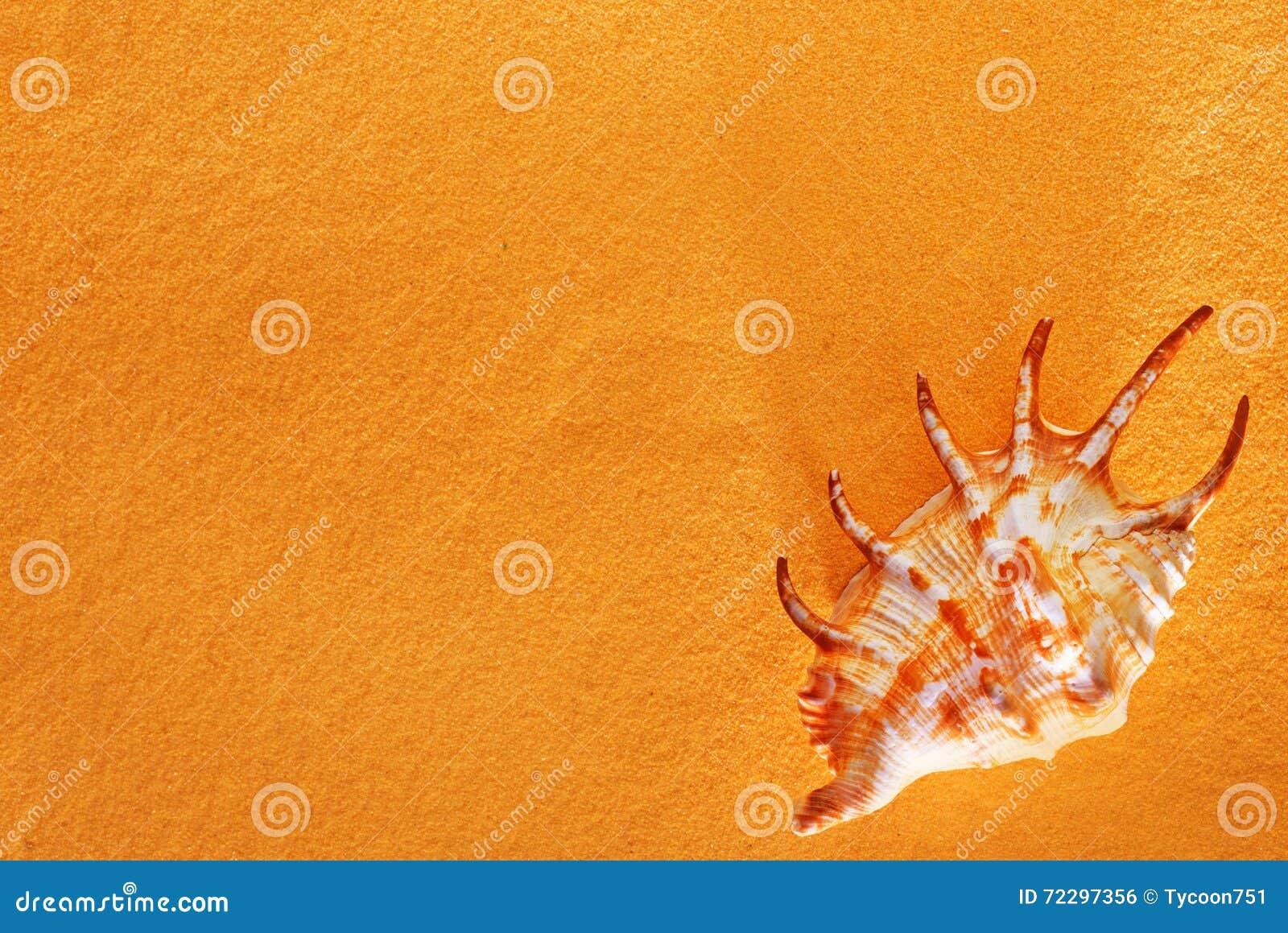 Download Справочная информация стоковое фото. изображение насчитывающей seashore - 72297356