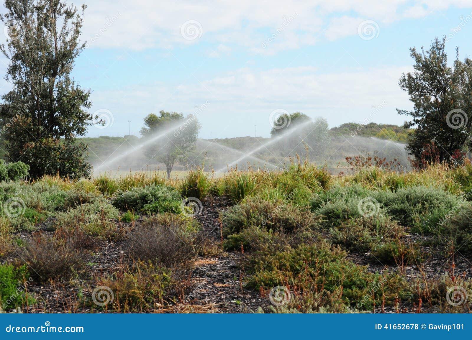 Спринклеры моча сад с брызгом воды