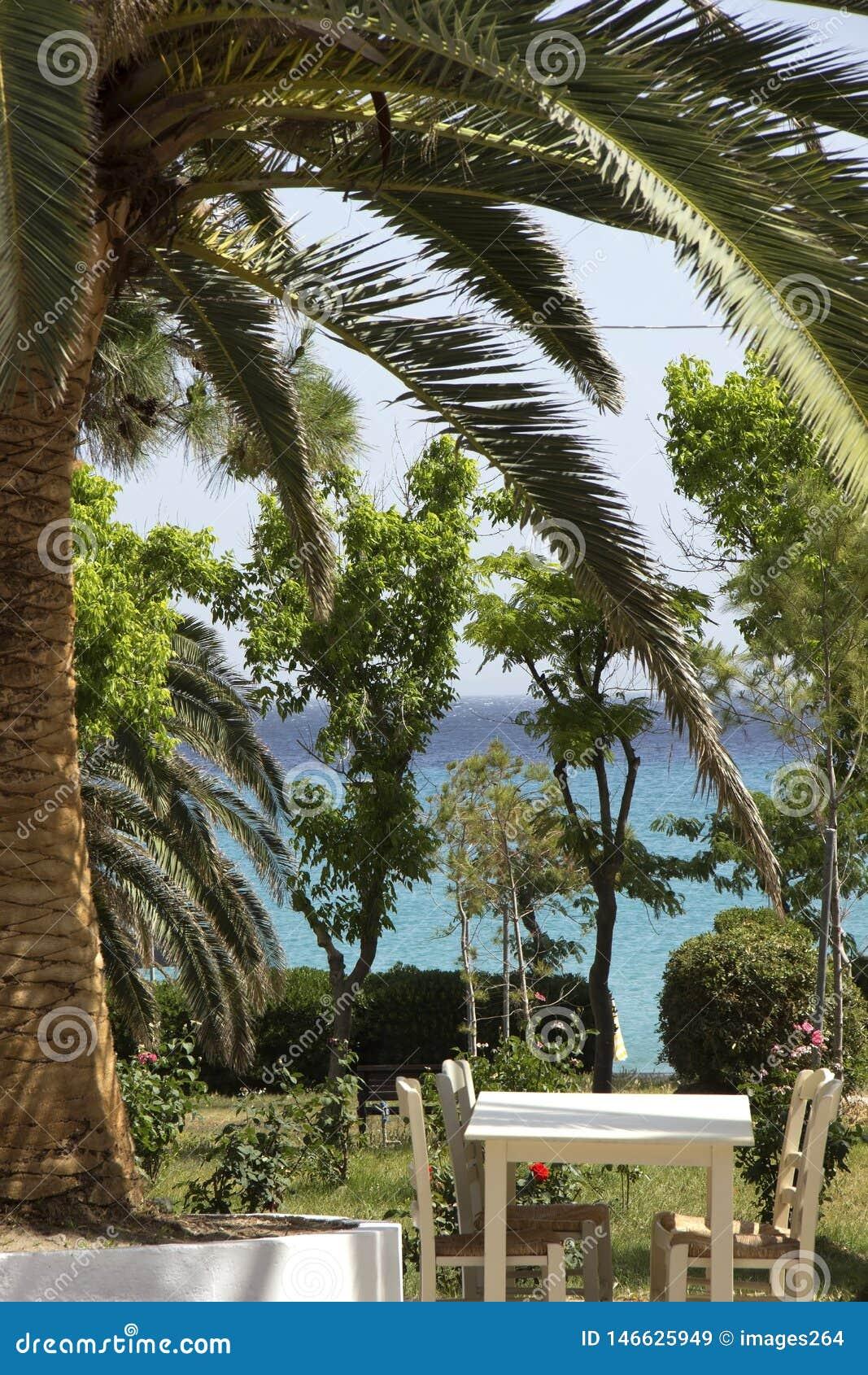 Среднеземноморской сад