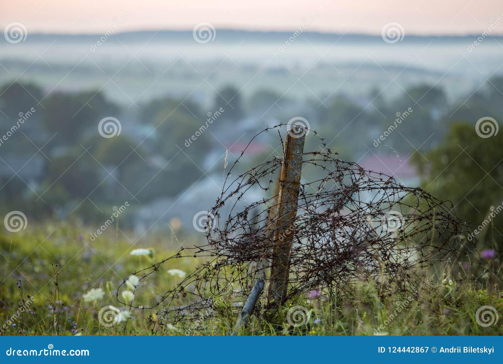 Старая большая колючая проволока свернулась спиралью на ржавом поляке, сломанной загородке сада на травянистом зацветая холме на