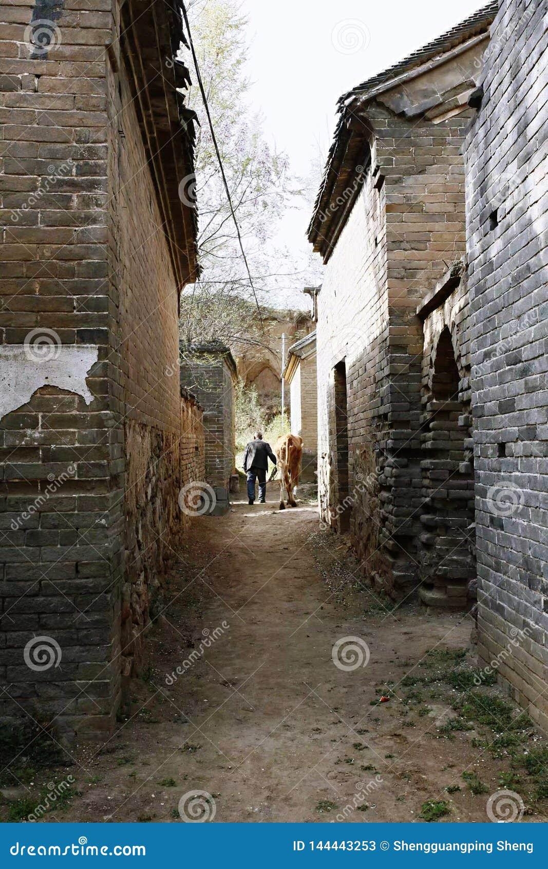 Старая деревня нового Milulou