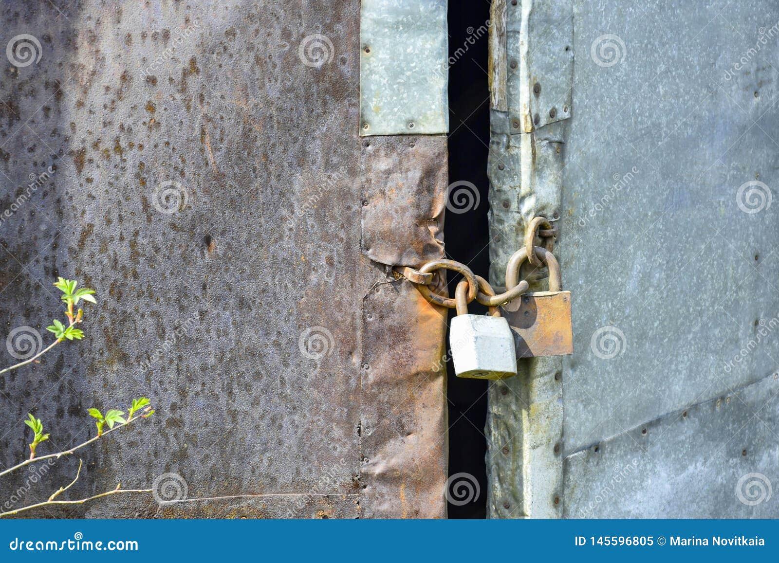 Старая деревянная дверь обитая с ржавым утюжит лист и оцинкованную жесть