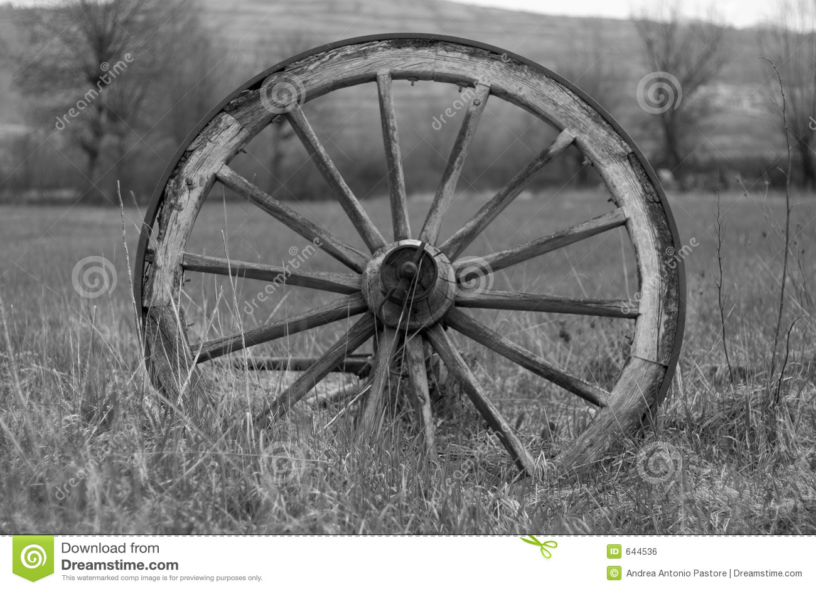 старое колесо фуры 2