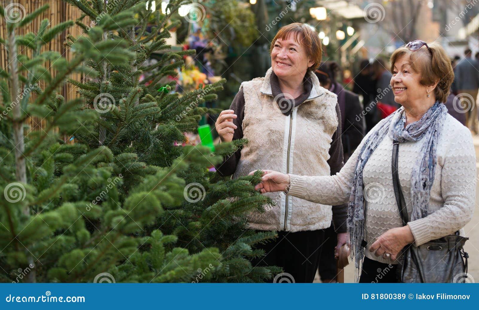 Старшие женщины выбирая спрус рождества