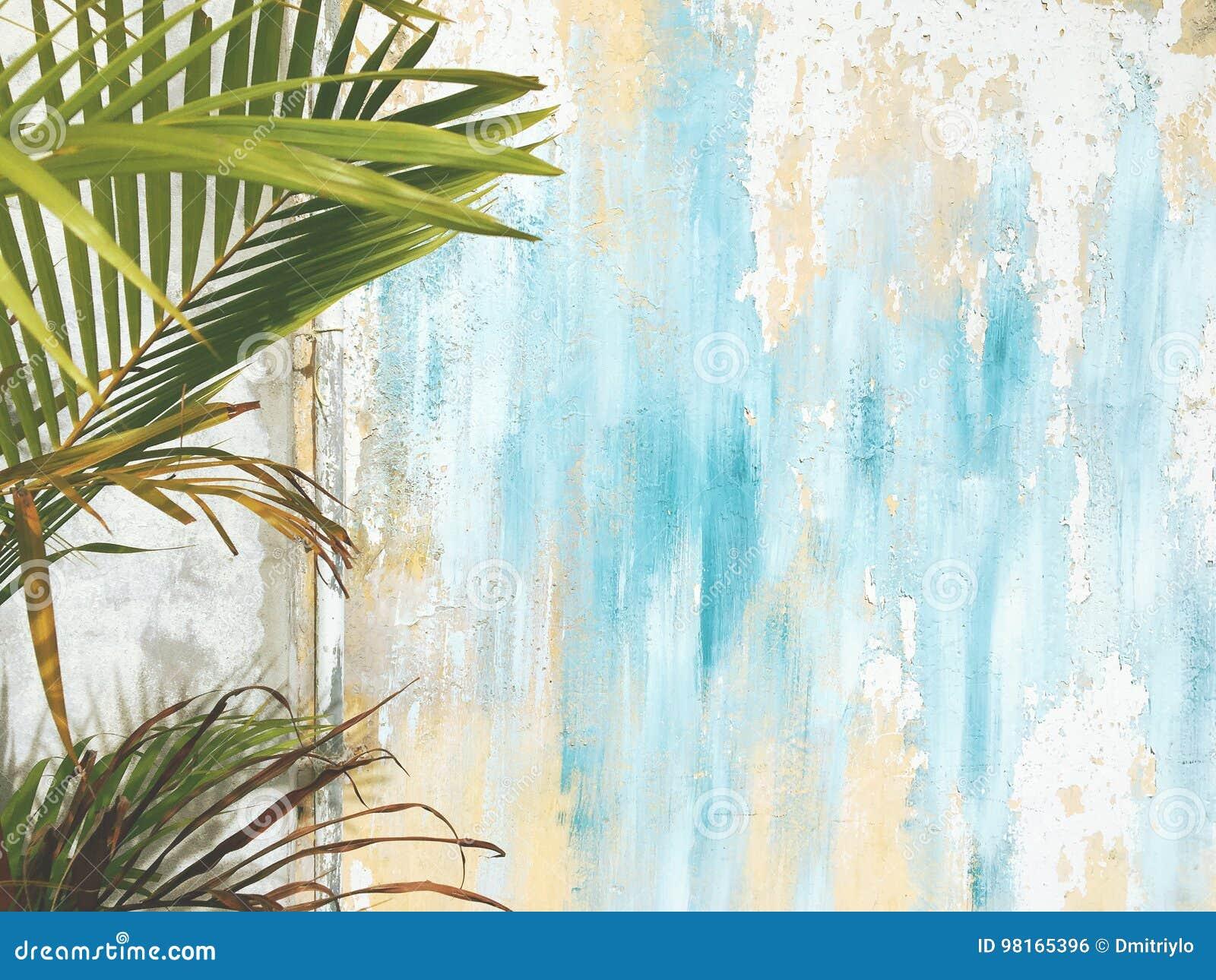 Старые треснутые античные винтажные исторические стена дома и ветвь лист пальмы Перемещение тропического экзотического тайского л