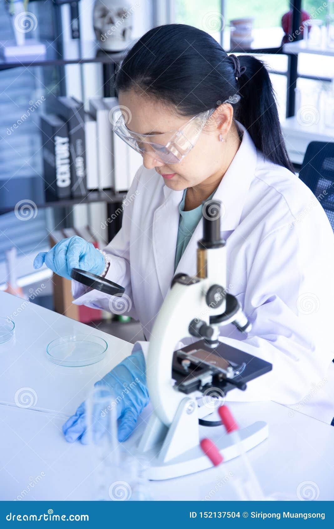 Старый взгляд ученого женщины Азии хотя лупа к чашке Петри в лаборатории к seriusly