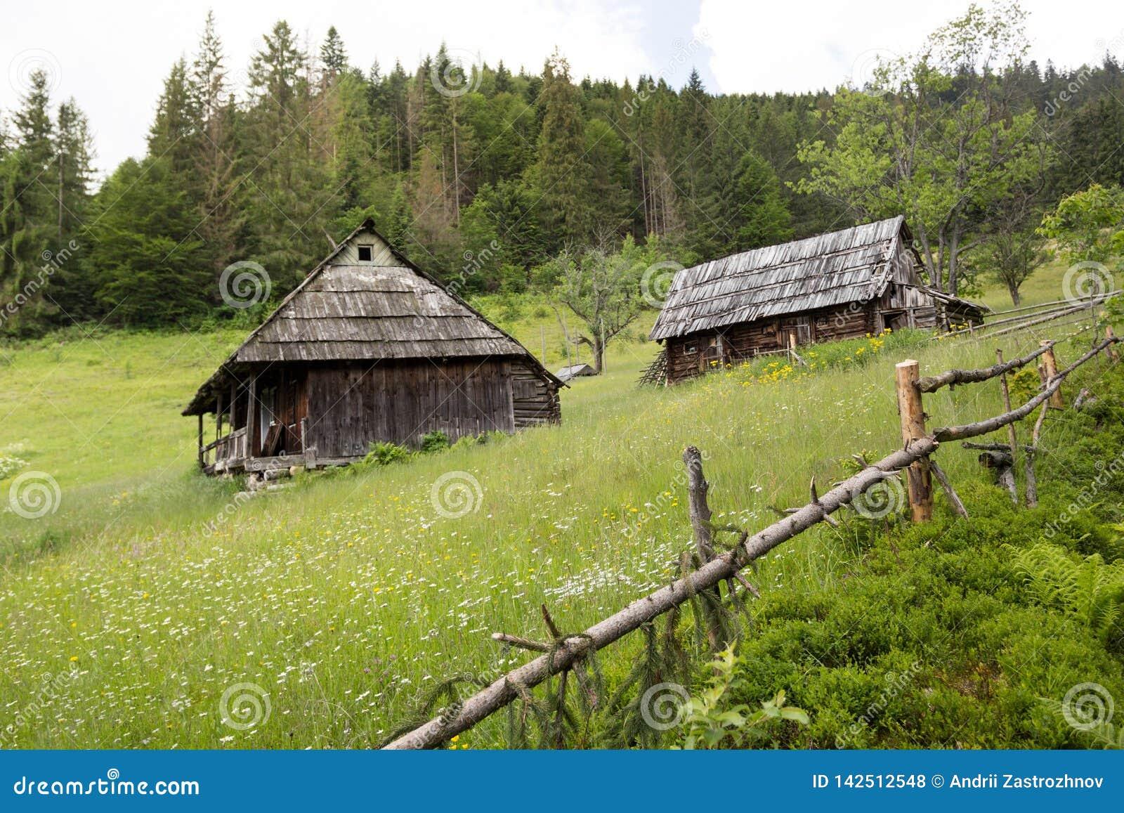 Старый деревянный дом 2 на горном склоне, окруженном загородкой Лес и горы на заднем плане схематические валы природы изображения