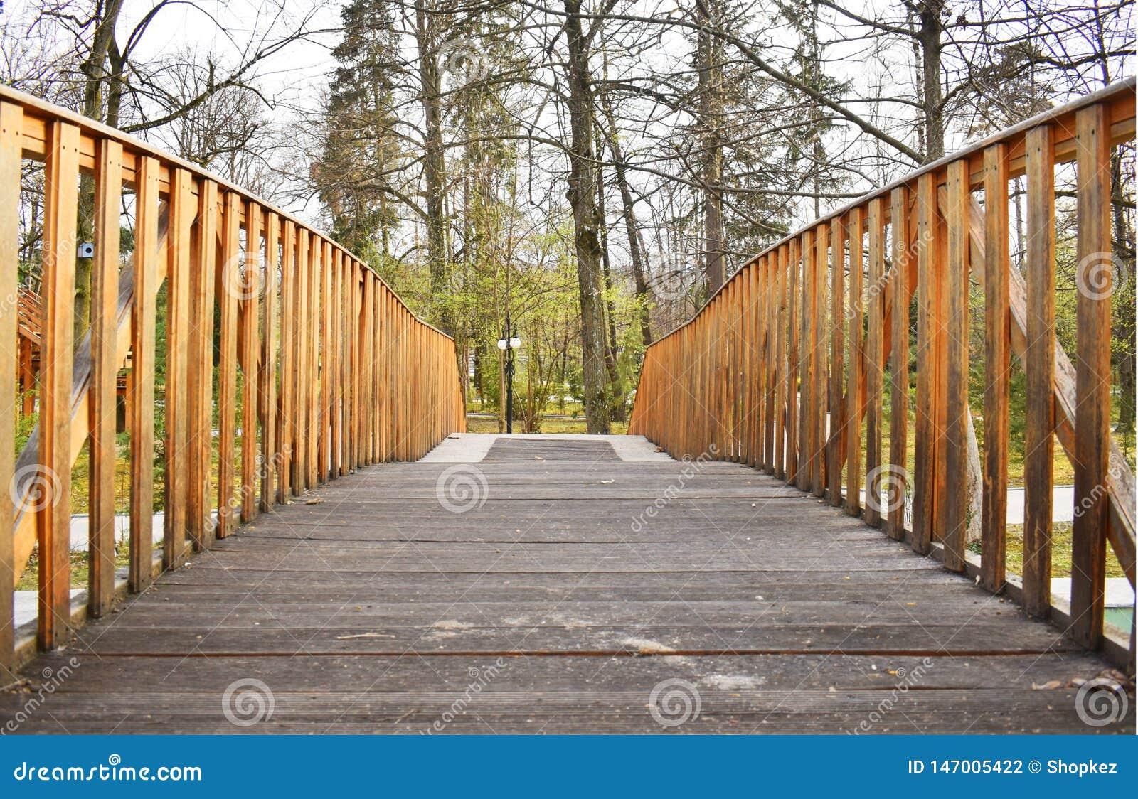 Старый деревянный мост в глубоком лесе, естественной винтажной предпосылке