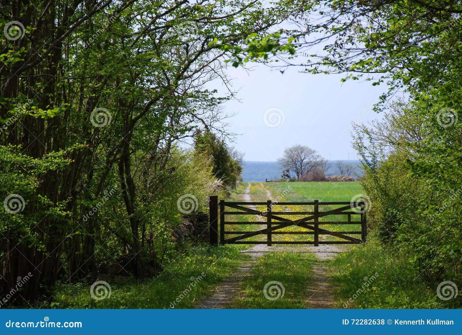 Download Старый деревянный строб в ландшафте зеленого цвета весны Стоковое Фото - изображение насчитывающей дорога, бобра: 72282638