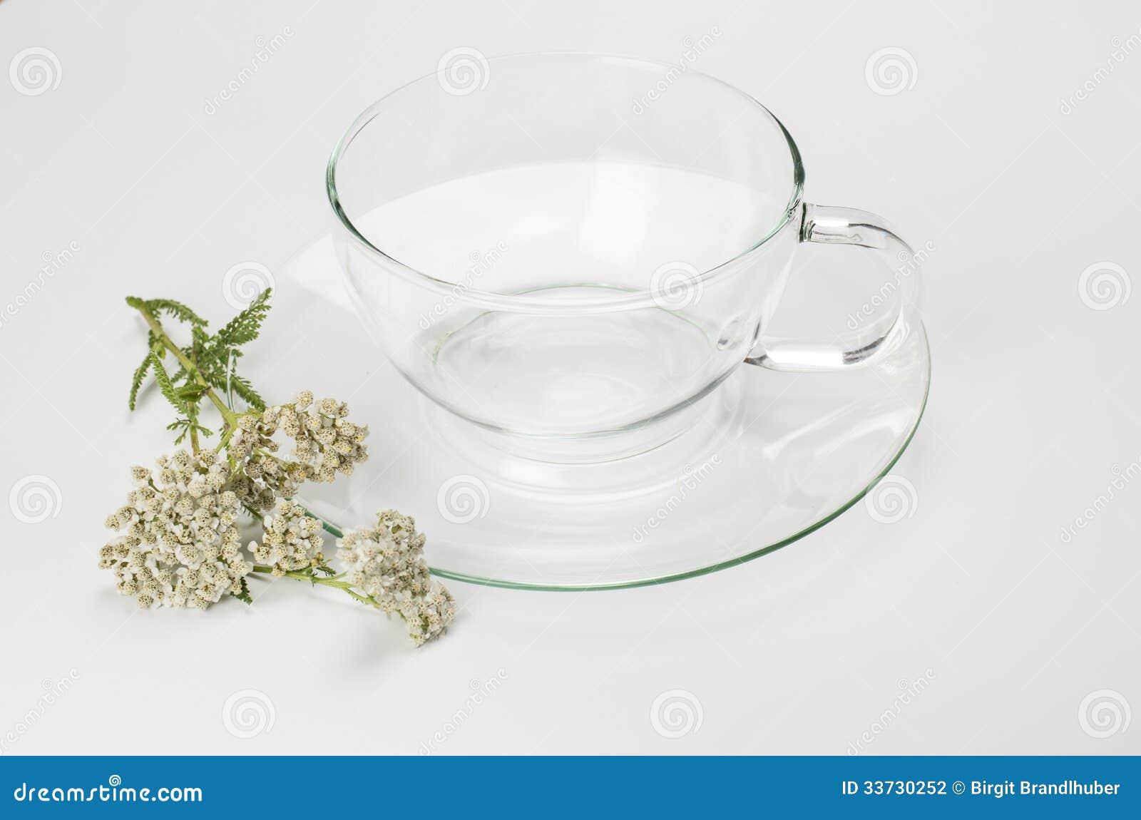 Стеклянное цветение чашка и тысячелистника обыкновенного