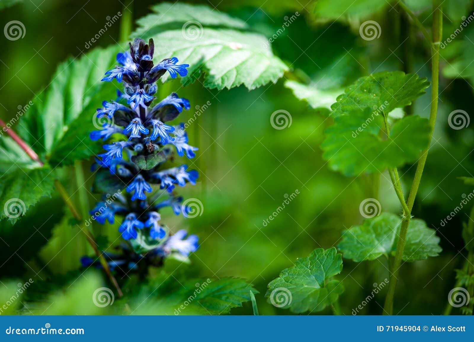 Стеклярус в цветке