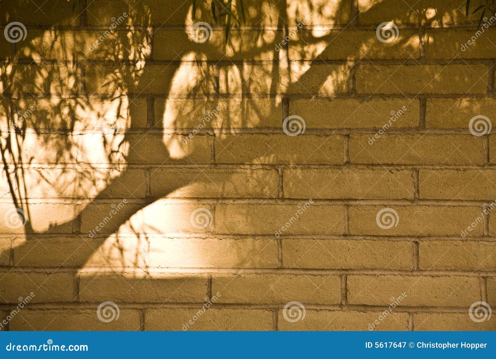 стена ая саманом