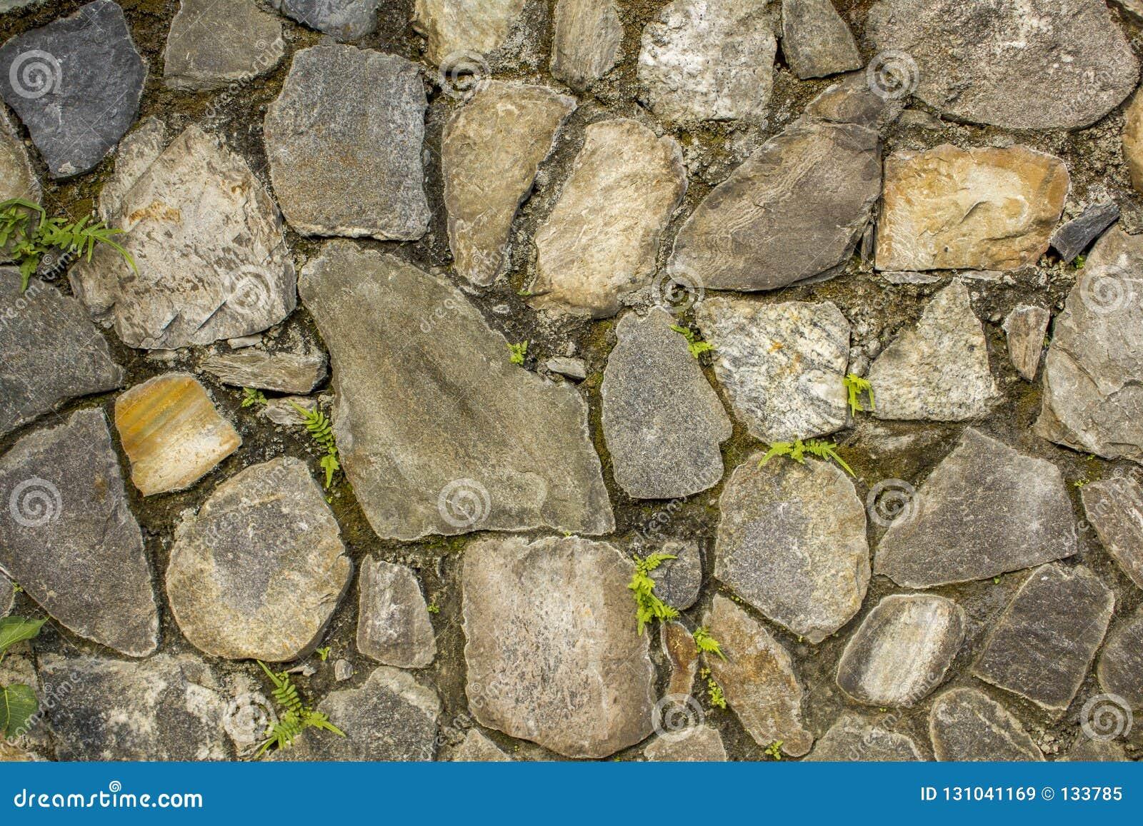 Стена различных больших естественных камней с небольшой зеленой растительностью Стена с мхом грубая текстура поверхности стены се