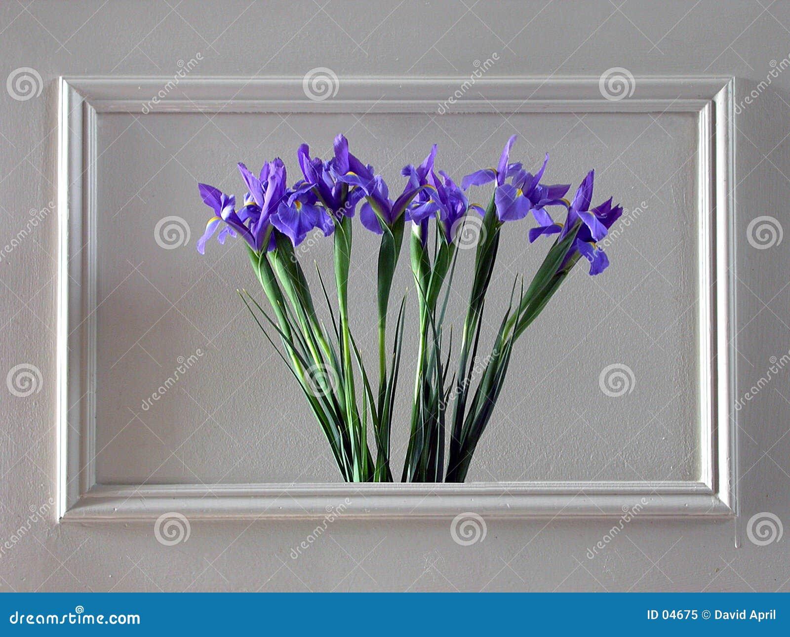 стена цветков