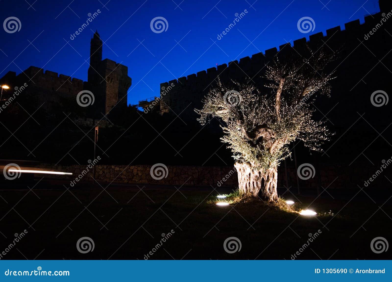 стены вала мира Иерусалима рассвета города старые прованские
