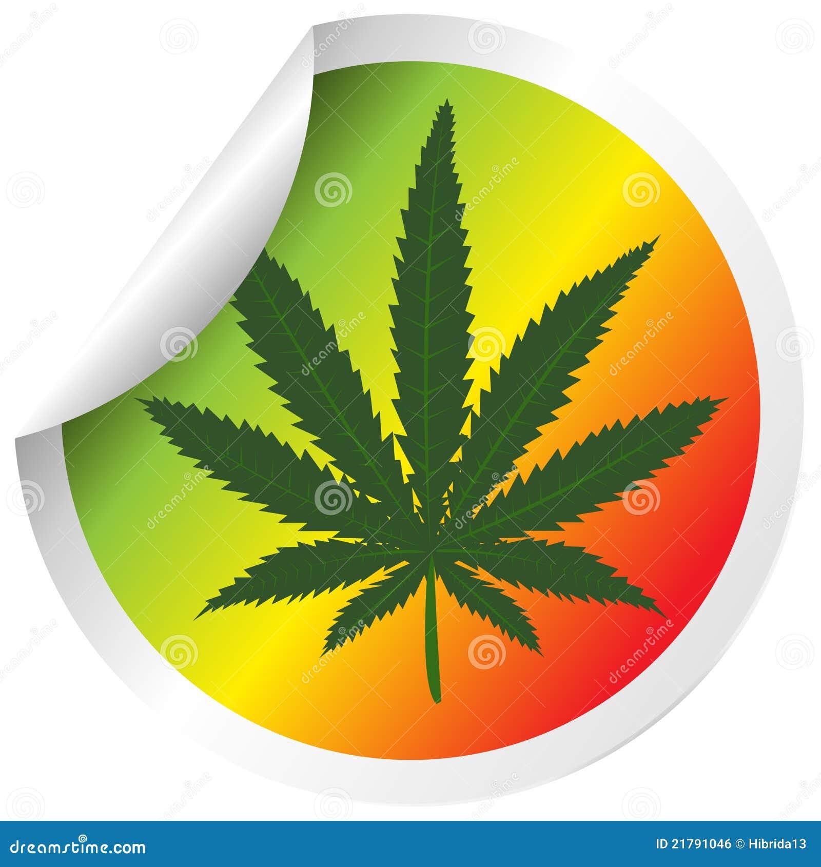 Скачать марихуана 2000 скачать песнь линда марихуана