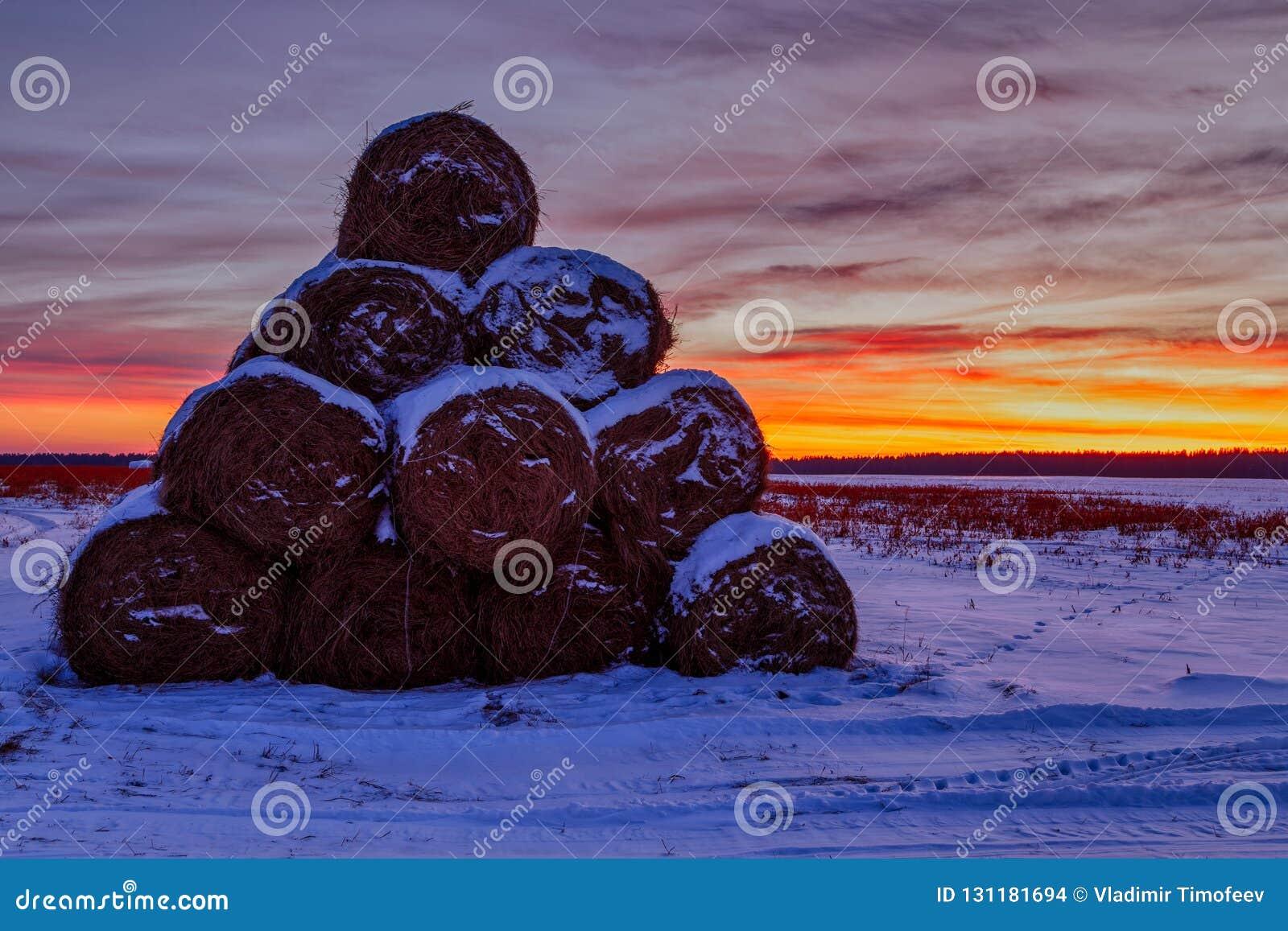 Стога сена в пирамиде сложенной полем на заходе солнца и красном желтом небе во взгляде ландшафта открытки зимы