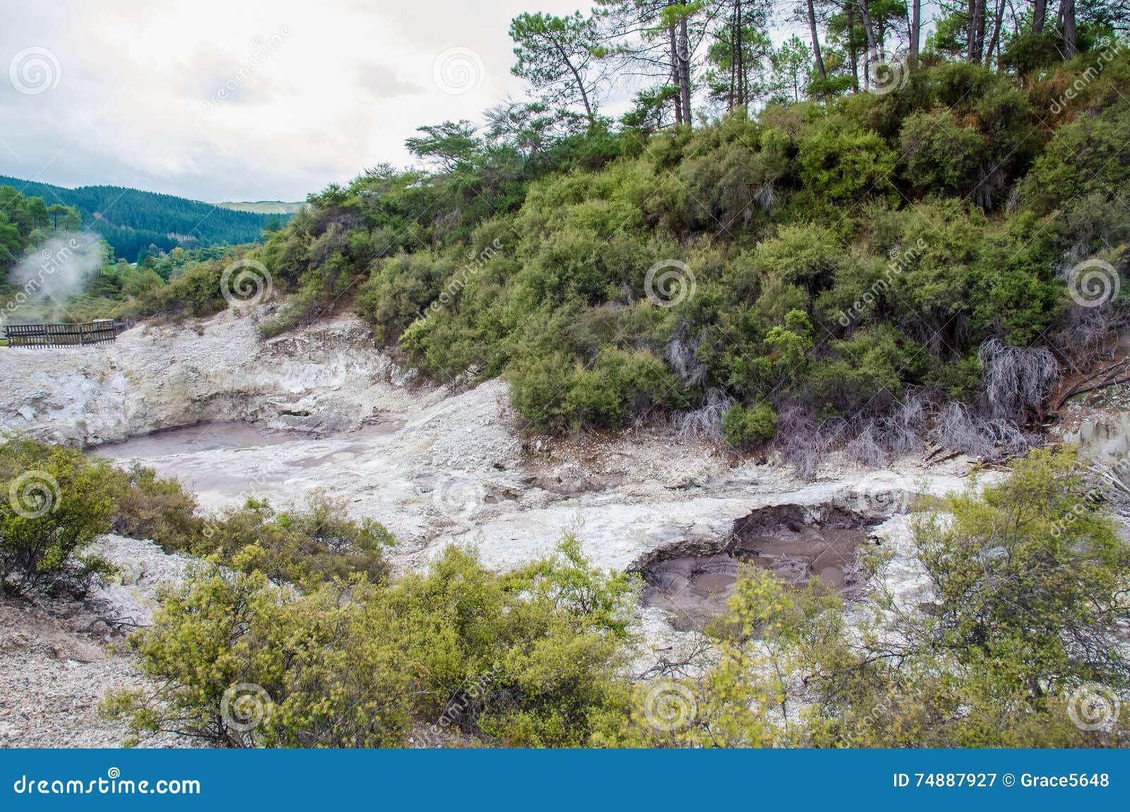 Страна чудес Wai-O-Tapu термальная которая расположена в Rotorua, Новой Зеландии