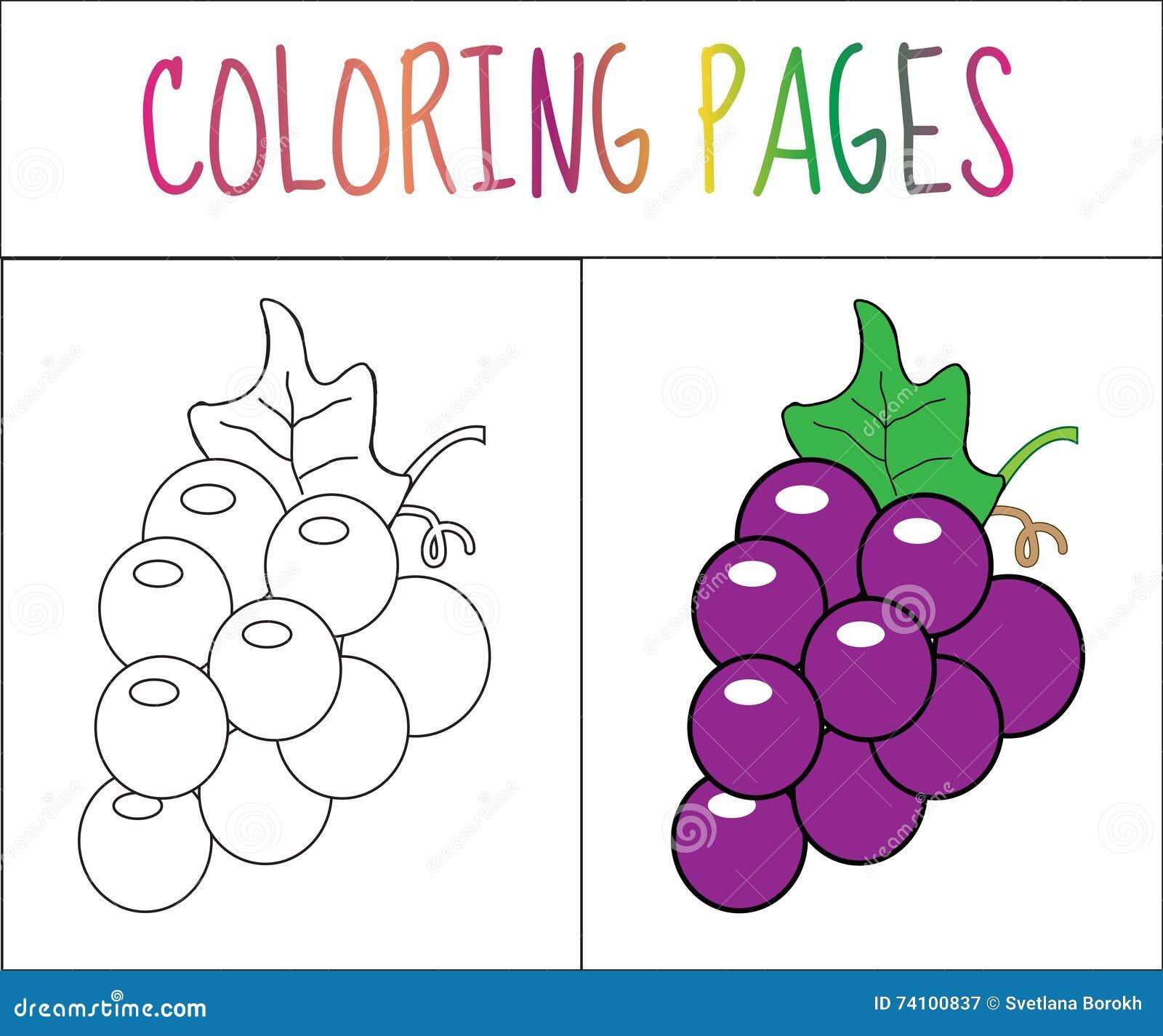страница книжка раскраски виноградины версия эскиза и цвета