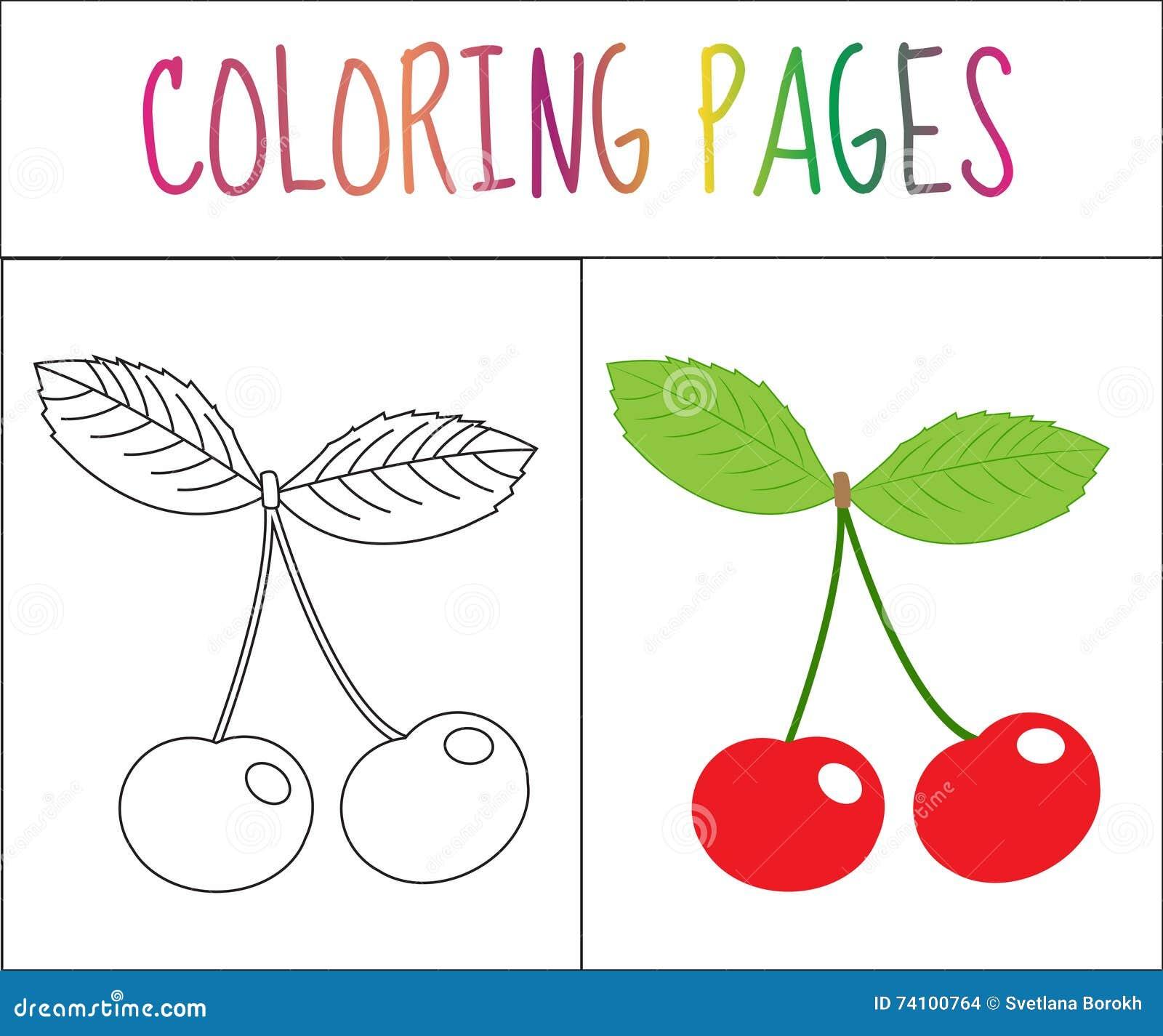 Страница книжка-раскраски Вишня Версия эскиза и цвета расцветка для детей также вектор иллюстрации притяжки corel