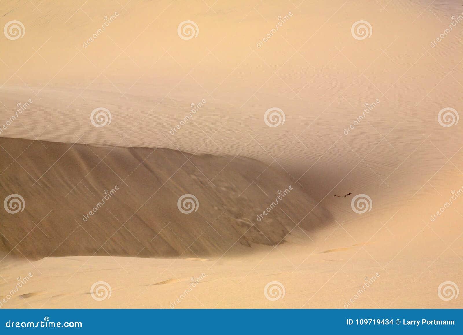 Струясь песок и дюны для предпосылки