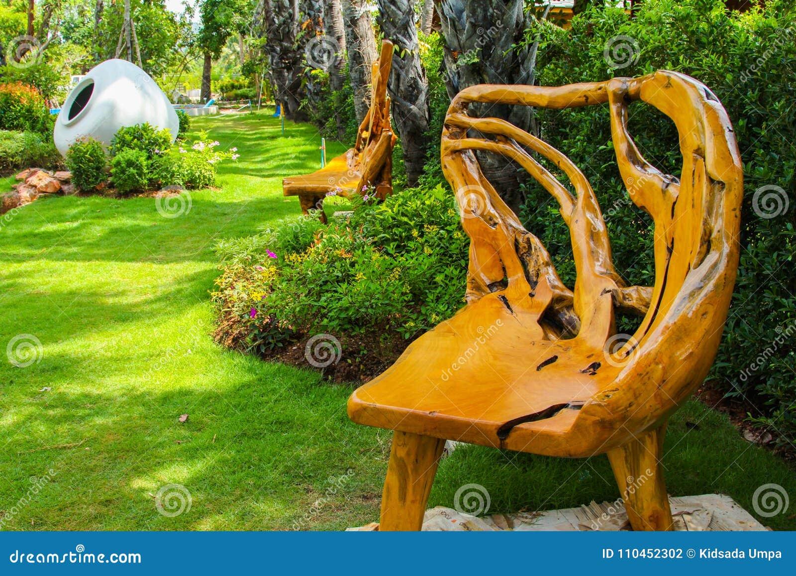 Стул корня в парке