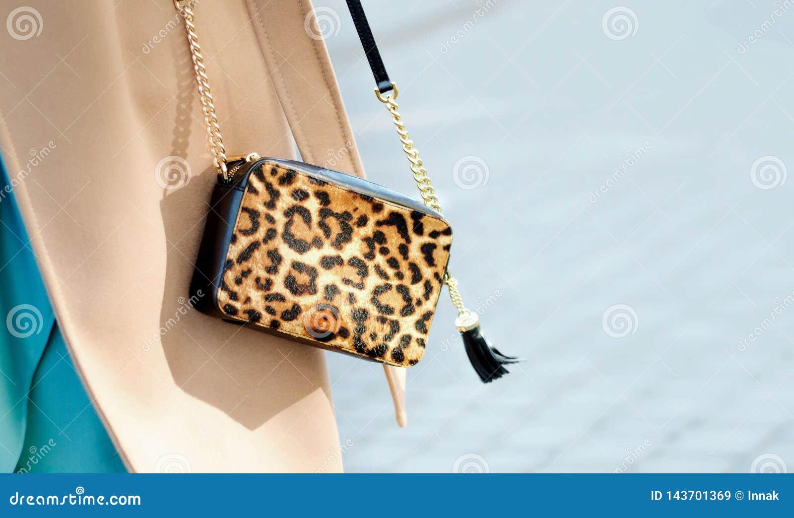 Сумка в конце-вверх печати леопарда Небольшая кожаная сумка в женских руках Женщина идя в город