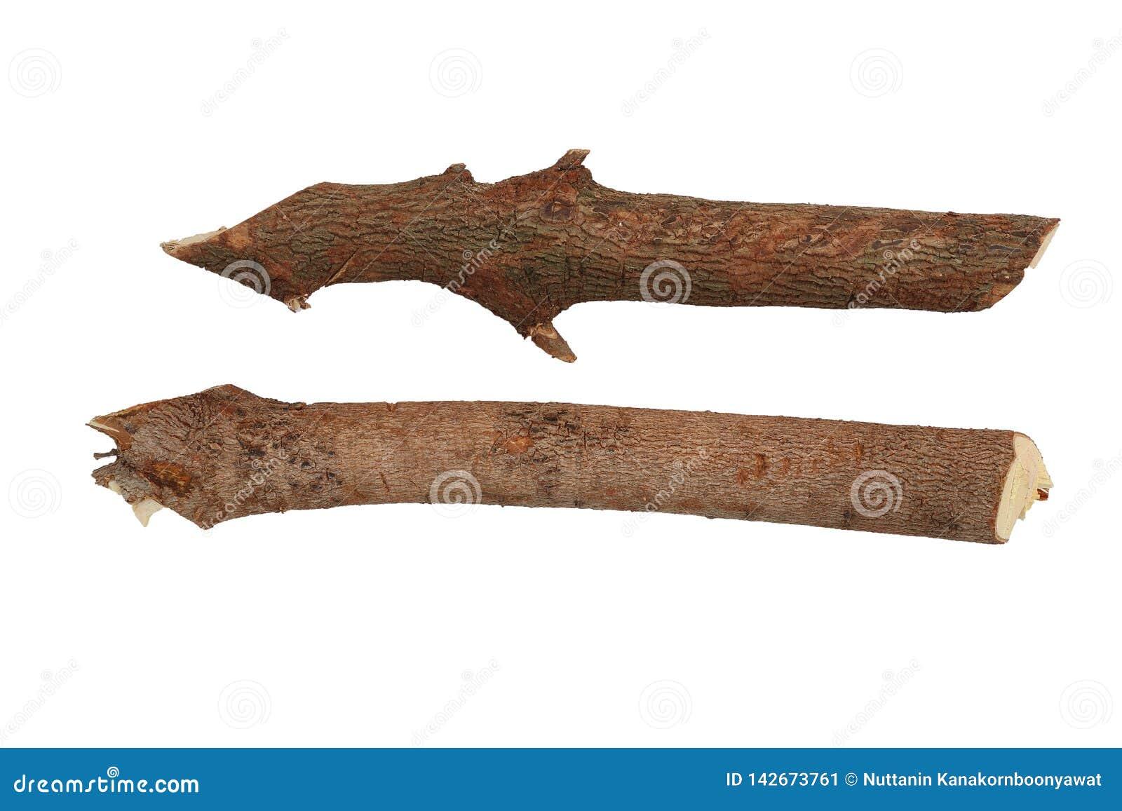 Сухие хворостины ветвей изолированные на белой предпосылке, швырке, подготовленном для нагревать дом Собирать древесину огня на з