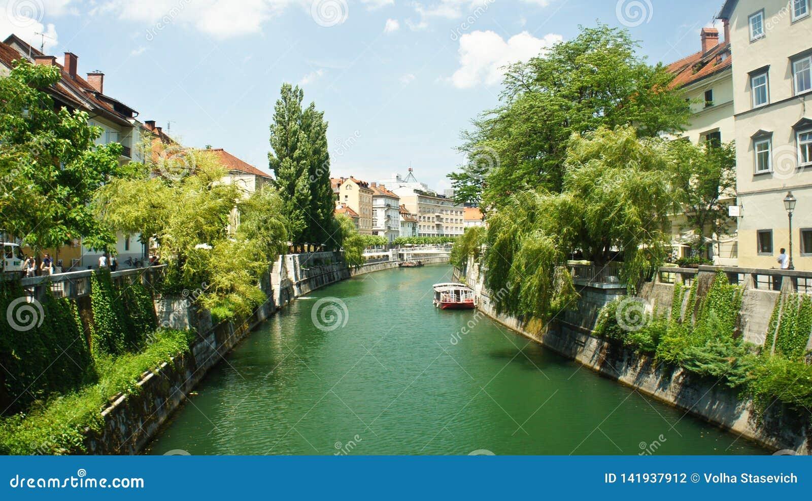 Сценарный взгляд реки Ljubljanica в старом городке, городском пейзаже с зел