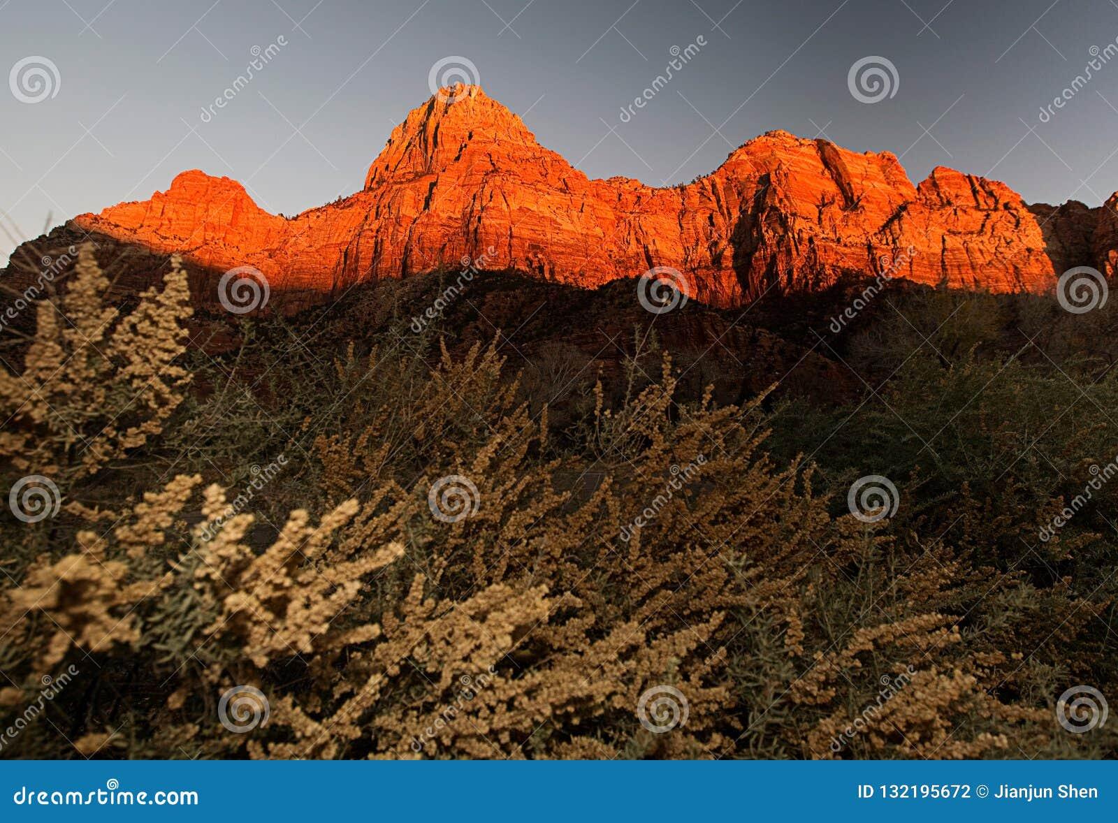 Сцена на национальном парке zion на заходе солнца