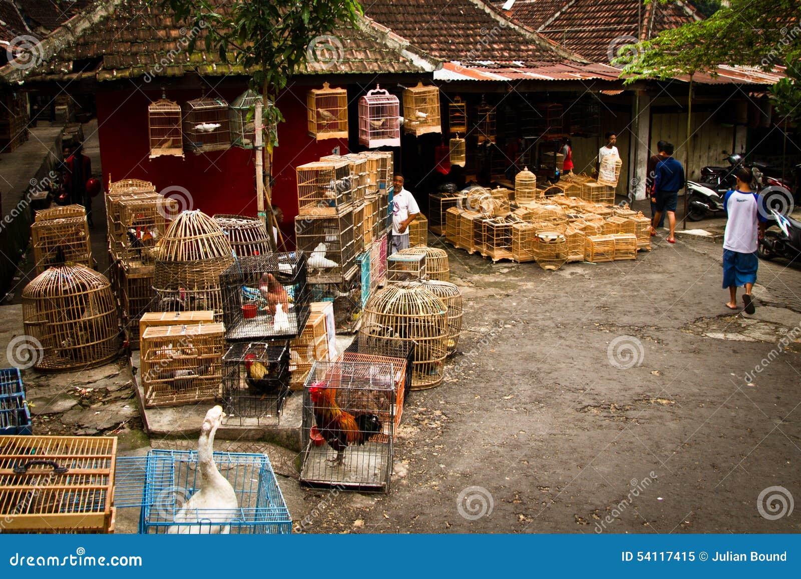 Сцена рынков птицы Malang, Индонезии