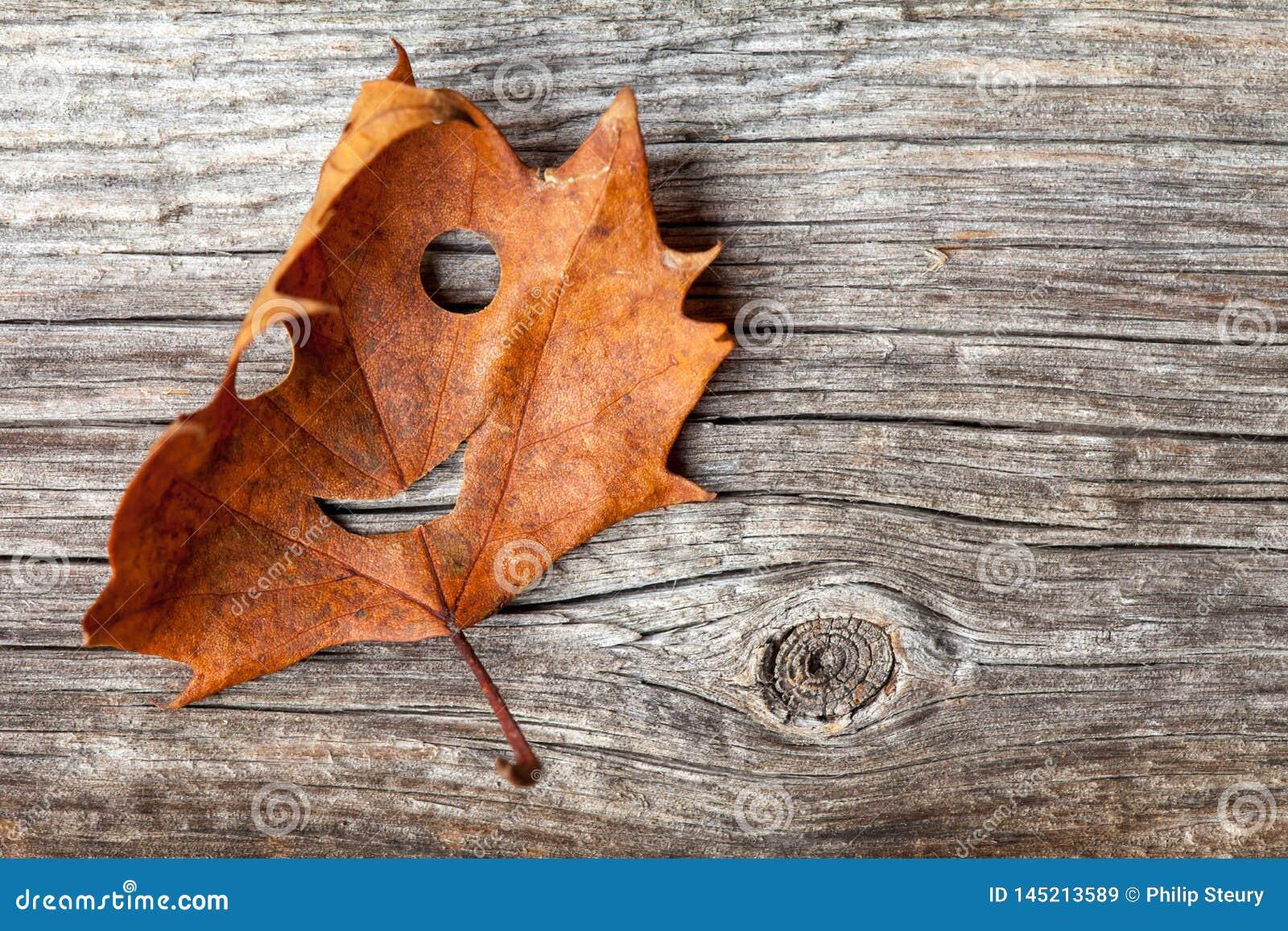 Счастливые лист осени