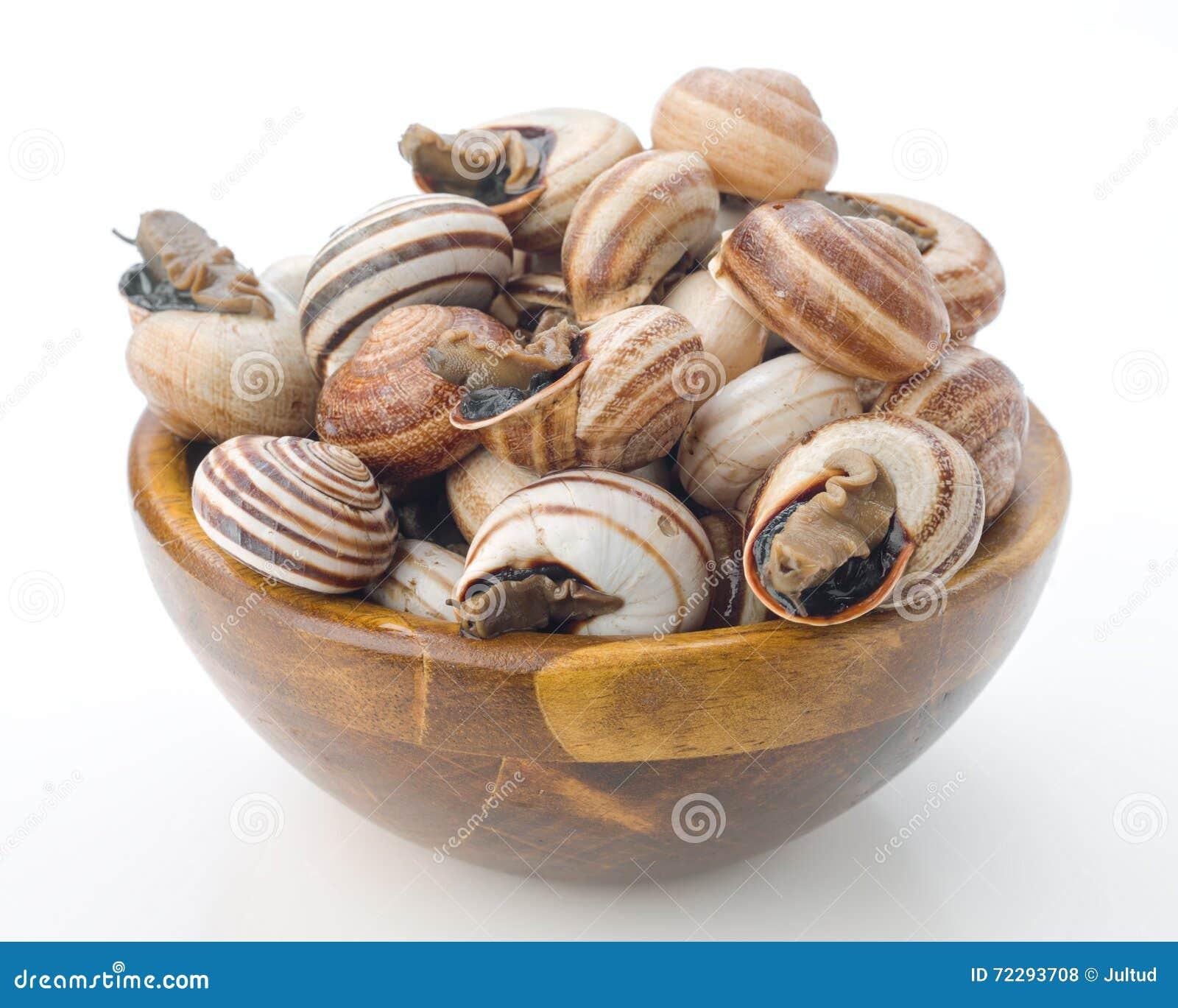 Download Сырое escargot в шаре стоковое фото. изображение насчитывающей макрос - 72293708