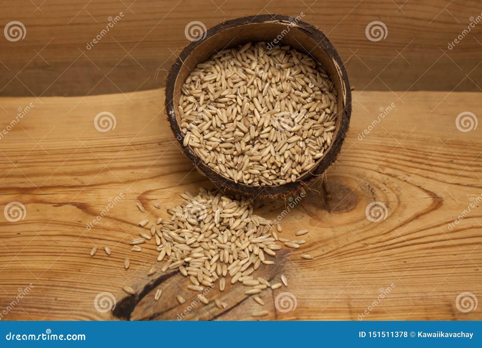 Сырцовые зерна овса в раковине кокоса, ингредиенте на очень вкусный здоровый завтрак на деревянной предпосылке, космос экземпляра