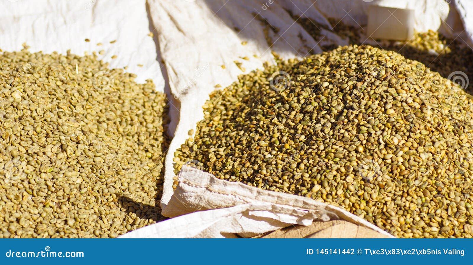 Сырцовые кофейные зерна