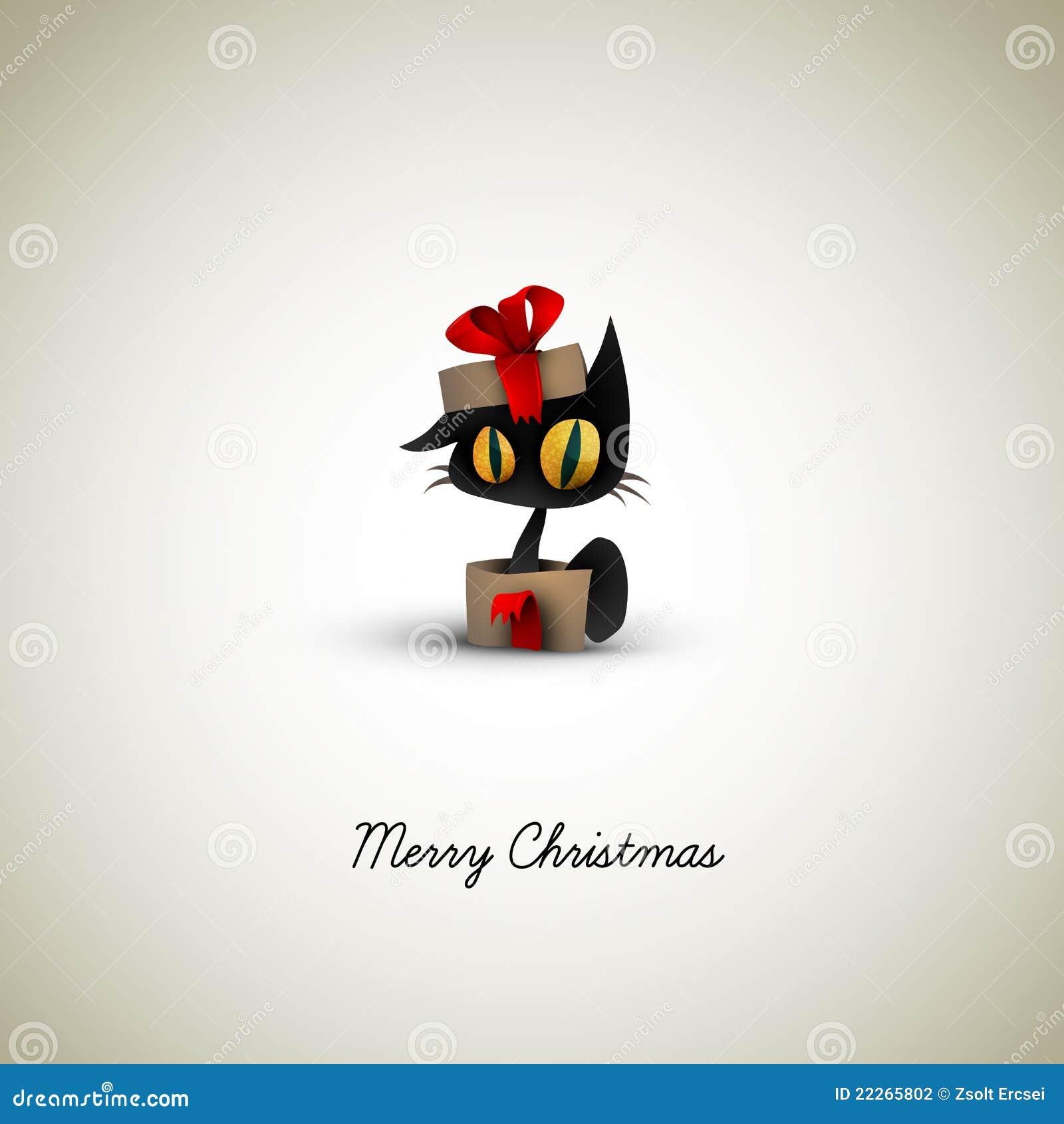 сярприз подарка рождества кота коробки