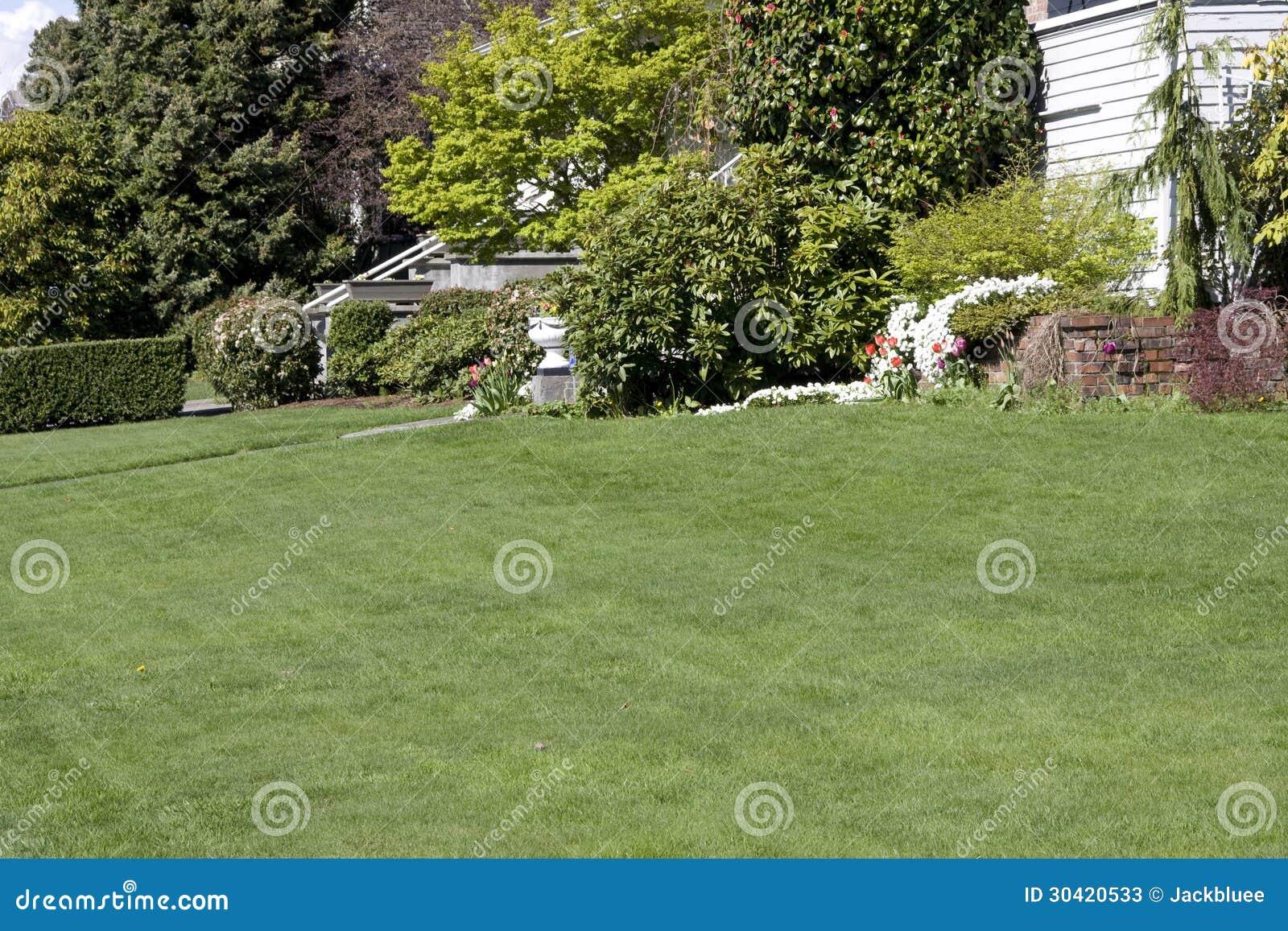 Славная лужайка в дворе перед входом