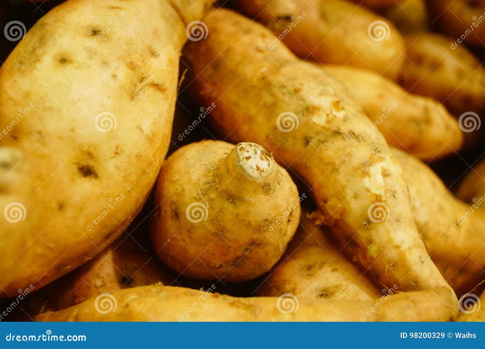 Download Сладкий картофель, произведенный в провинции Цзянси Китая Стоковое Изображение - изображение насчитывающей экологическо, aiders: 98200329