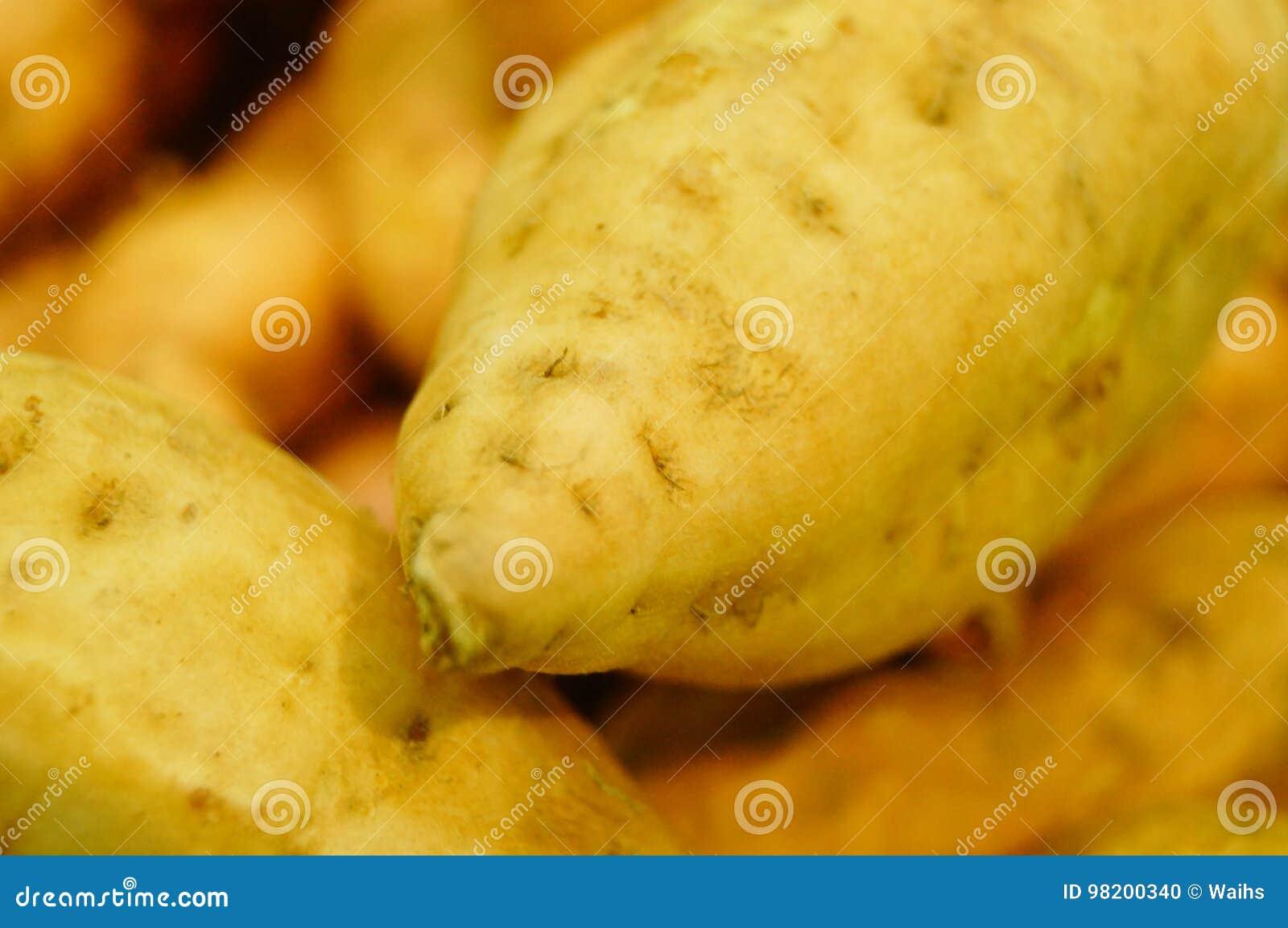 Download Сладкий картофель, произведенный в провинции Цзянси Китая Стоковое Фото - изображение насчитывающей aiders, еда: 98200340