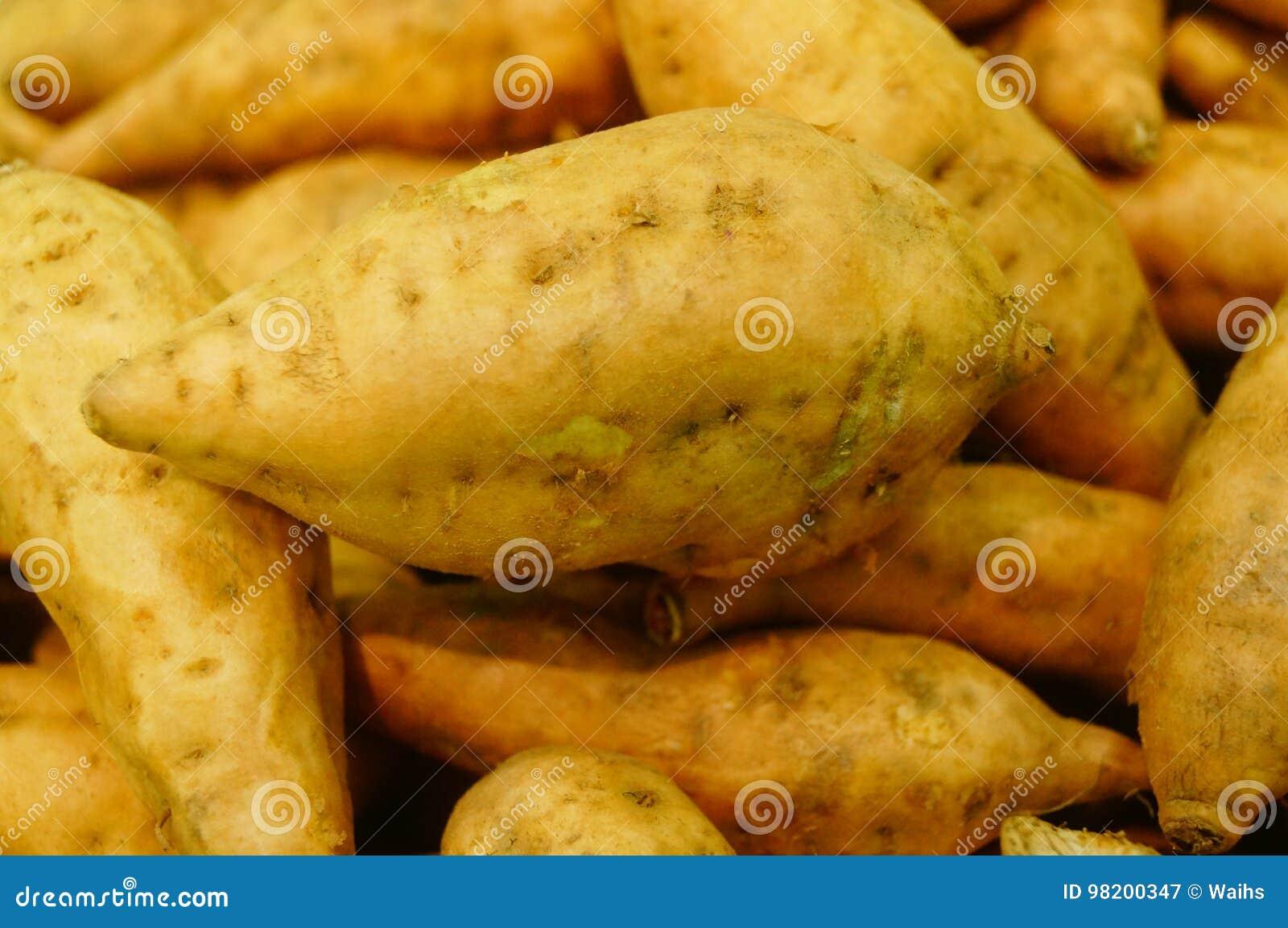 Download Сладкий картофель, произведенный в провинции Цзянси Китая Стоковое Изображение - изображение насчитывающей жизнь, вкусно: 98200347