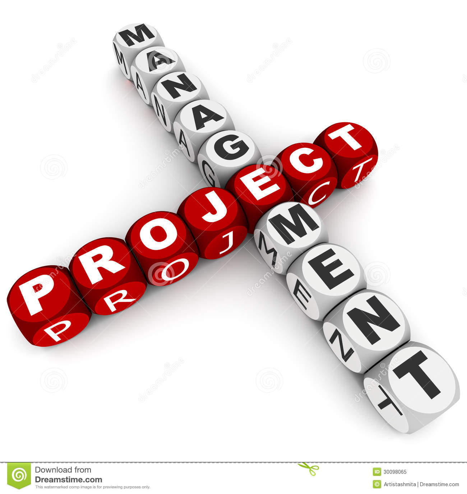 Руководство проектом